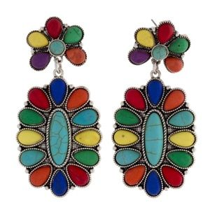 Jewelry - Colorful Stone Earrings